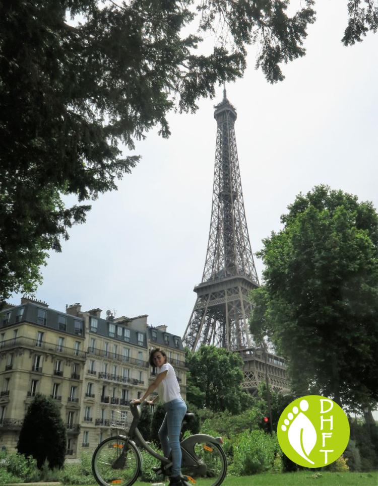 Paris Sehenswuerdigkeit Eiffel Turm Parksicht