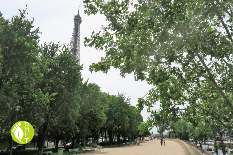 Paris Sehenswuerdigkeit Park in der Richtung des Eiffelturmes