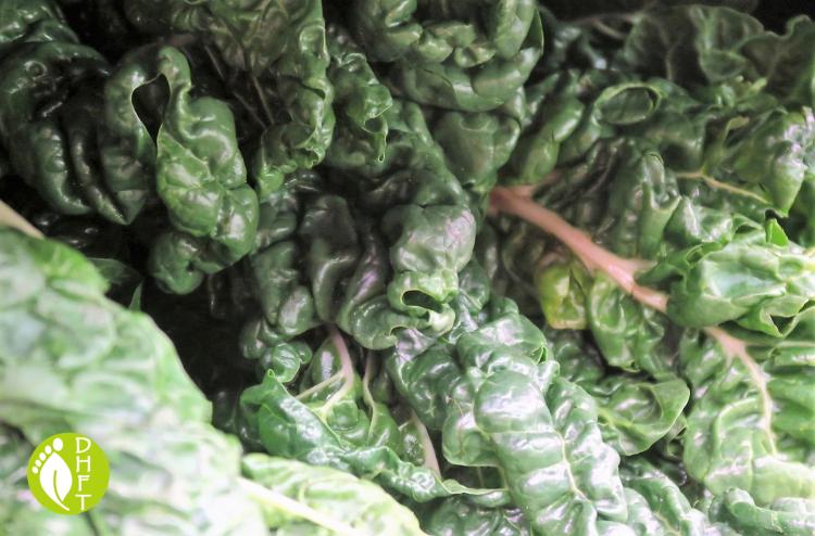 vegane und vegetarische Naehrstoffe Eisen