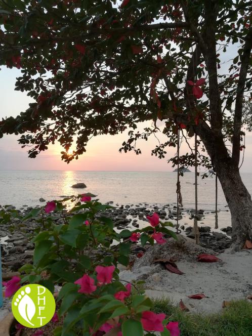 Koh Chang Sea Flower Resort Stein Strand 2
